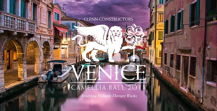 AnMed Health Foundation Camellia Ball 2018